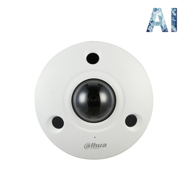 Dahua IP 12MP AI Fisheye Panoramic Camera Image | Metro Solutions